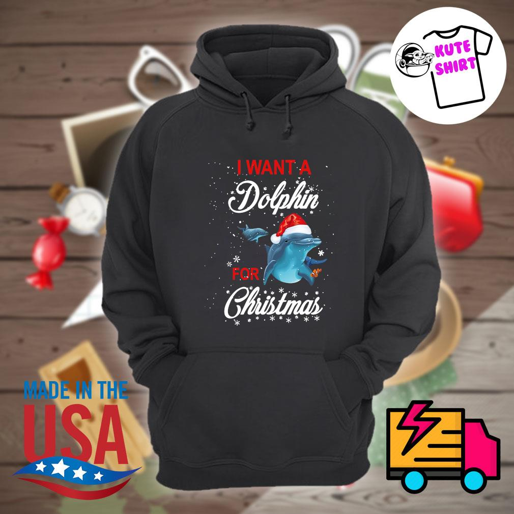 I want a Dolphin for Christmas s Hoodie